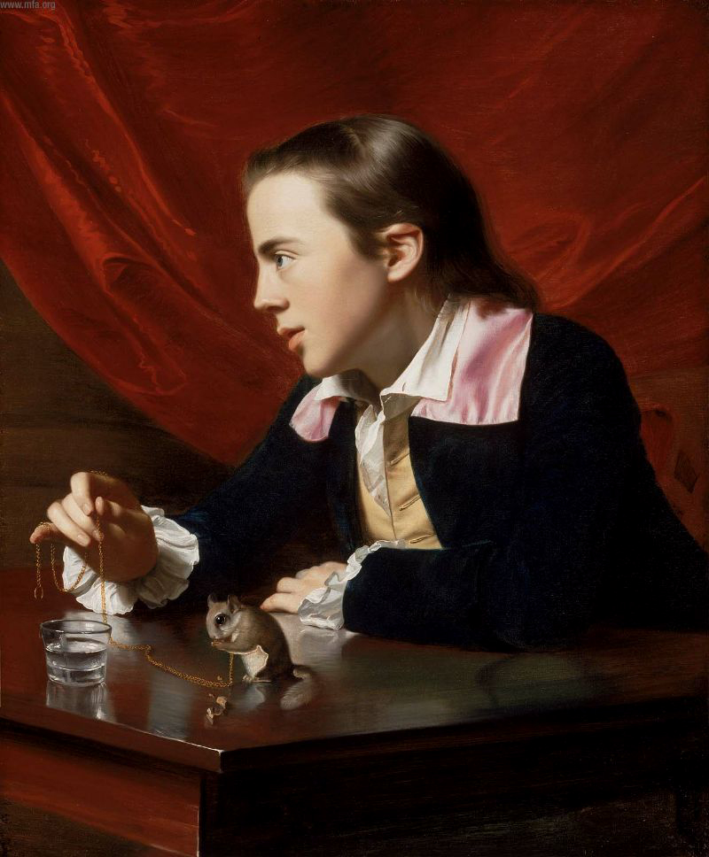 J S Copley - Boy with Squirrel